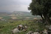 Ayn Jalut Battlefield
