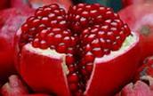History of pomegranates