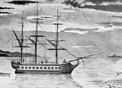 captain cook ship's name is Endeavour
