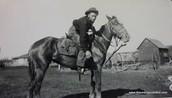 Nat and his horses