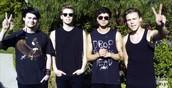 Michael, Luke, Calum, Ashton