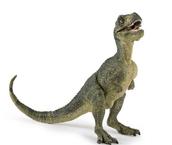 T-Rex/Dino Found!