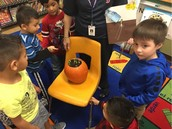 Ms. Gholson's PreK Panthers show off their pumpkin that's growing...pumpkins!
