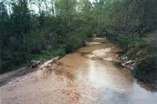 stream located in forta Payne