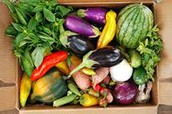 If you join a CSA, you receive fresh food daily