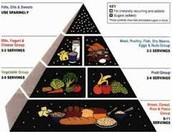 Oldest Food Pyramid