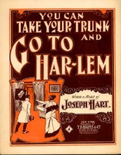 #8 What do you think is the most important theme, message, or meaning of the Harlem Renaissance?