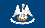 The Louisiana flag