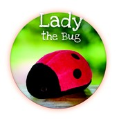 Lady The Bug