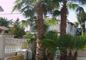 Villas in Costa Brava