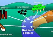 Nonpoint Source Pollution Contribution