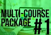 Multi Course Package #1