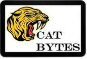 Cat Bytes from Mrs. Kunz