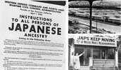 What are Japanese Internment Camps, and What Group of People Were Targeted?