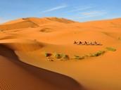 People crossing a desert