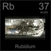 Rudibium