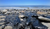 Beaches Buried