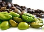 綠咖啡豆成分
