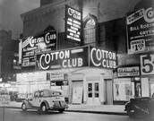 "Local ""Cotton Club"""