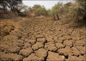 Deserfication in Botswana