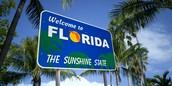 Yo conduje a Florida por mi mismo.