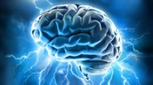the Power of the Brain