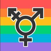Sexuality & Diversity
