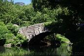 Small bridge at The Pond