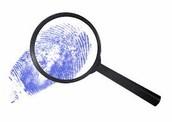 Government Investigator