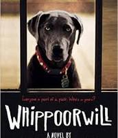 Whippoorwill by Joseph Monninger