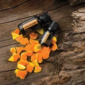 Product of the Month Wild Orange 15 mL