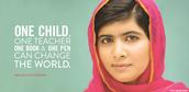 Wat wil het Malala fonds bereiken ?