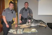 Police and K-9 unit involved in drug bust.