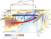Surface Circulation