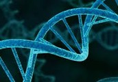 DNA in Biotechnology