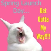 Spring Launch is COMING SOON!