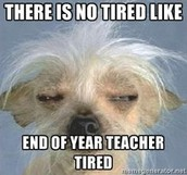 There is no tired like end of the year teacher tired!