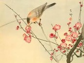 A bird in a blossom tree