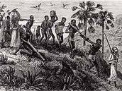 The Trend of Slave Trade