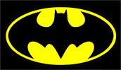 Bat house Research