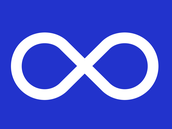 4 facts about the metis
