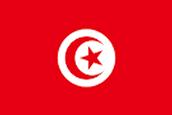 גודל אוכלוסיית תוניסיה