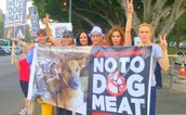People standing up against eating dogs :)
