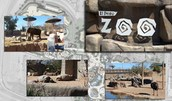 You can visit the El Paso Zoo!