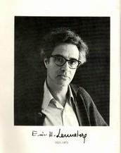 Eric Lenneberg