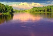 This is the Bug River in Poland.
