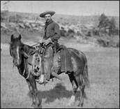 life as a texas ranger