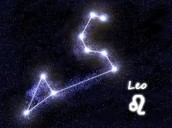 Leo IN SPACE