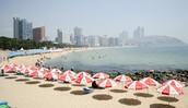 要是你想 swimming, 你去 Haeundae Beach.