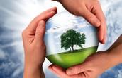 Sustainablity